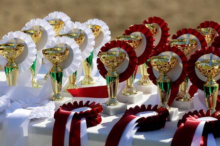 caballo saltando: las tazas del trofeo de oro y cintas para los jinetes