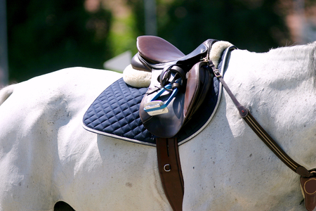 Saddle with stirrups on a back of a sporting show jumper horse