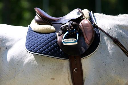 Beautiful leather saddle on back of a horse