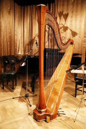 sonata: Harp and piano on stage before the concert