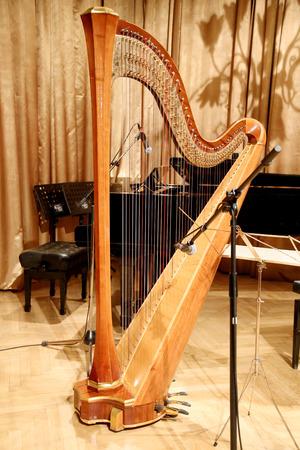 auditorium: Beautiful golden harp in the auditorium before concert Stock Photo