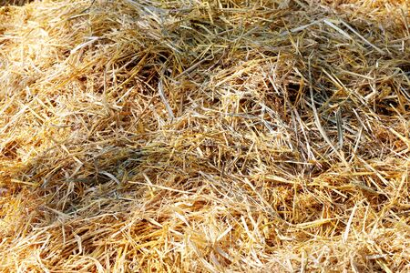 hayrick: Summer background of hay from stack. Haystack closeup as a background