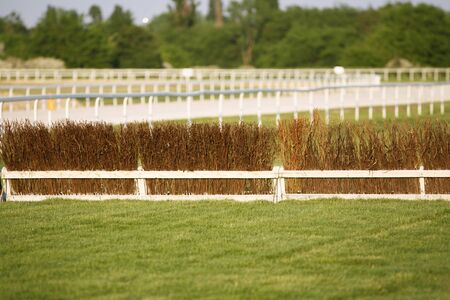 racecourse: Fence as obstacle for racehorses on racecourse