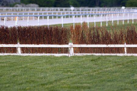 huellas de animales: pista de carreras de vacío para el verano de carreras de caballos