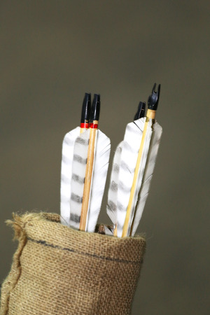 quiver: Various colored arrows in quiver as a background Stock Photo