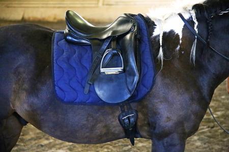 Saddle with Stirrups on the back of a horse mane Braided
