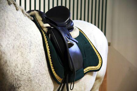 Beautiful leather saddle for equestrian sports on horseback Stock Photo