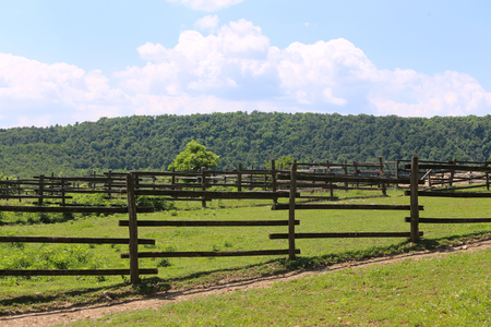 Panoramic view of rural animal farm sunny summer afternoon Stock Photo