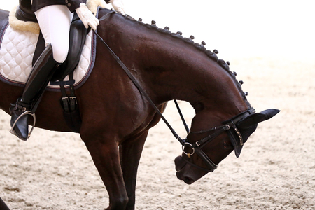 Unknown contestant rides at dressage horse event indoor in riding hall