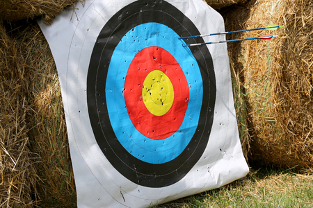 Practice target face with lot of shots. Used archery target on position at archery range summertime open air outdoors