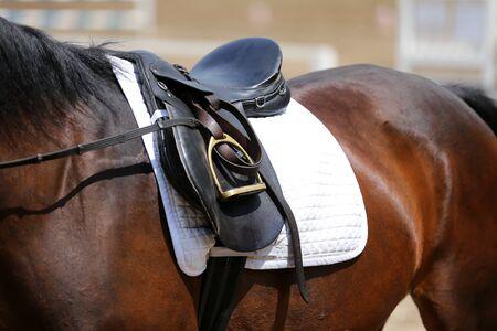 Schöner handgefertigter Dressurreitsattel mit Sattelgurt, Steigbügel auf Schabracke auf der Rennbahn