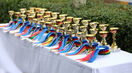 Awards waiting to be assigned after equitation event on racetrack
