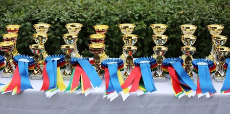 Beautiful colorful awards on the table to the winners of the races on racetrack Stock Photo