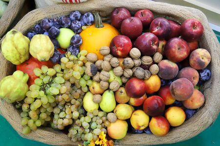 in basket as a background. Autumn fruit foods products as a background. Healthy organic harvest fruits as seasonal kitchen ingredients 스톡 콘텐츠