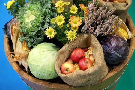 Group of various vegetables and fruits as an autumn background. Autumn foods products as a background. Healthy organic harvest fruits and vegetables as seasonal kitchen ingredients 스톡 콘텐츠 - 131302294