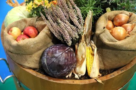 Group of various vegetables and fruits as an autumn background. Autumn foods products as a background. Healthy organic harvest fruits and vegetables as seasonal kitchen ingredients 스톡 콘텐츠 - 131302320