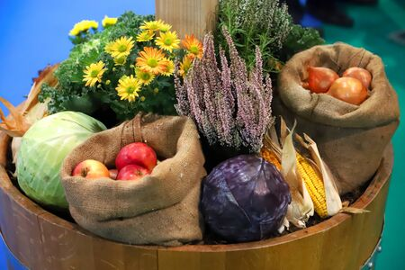 Group of various vegetables and fruits as an autumn background. Autumn foods products as a background. Healthy organic harvest fruits and vegetables as seasonal kitchen ingredients