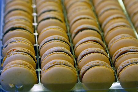 Colorful macarons background close up. Different colorful macaroons background. Shallow depth of field