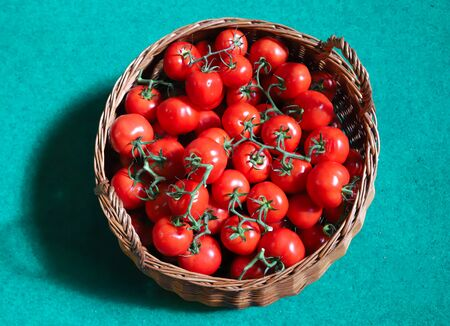 Red healthy tomatoes in handmade woven basket 스톡 콘텐츠