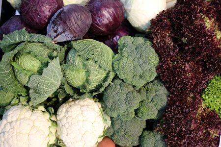 Group of various vegetables and as background. Agricultural products as a background. Healthy organic harvest vegetables as seasonal kitchen ingredients for sale at farmers market Imagens