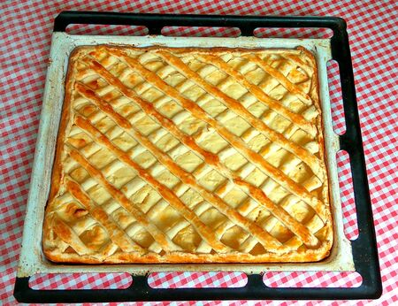 Sweet curd cheesecake by my dear mother in baking sheet on  checkered tablecloth Imagens