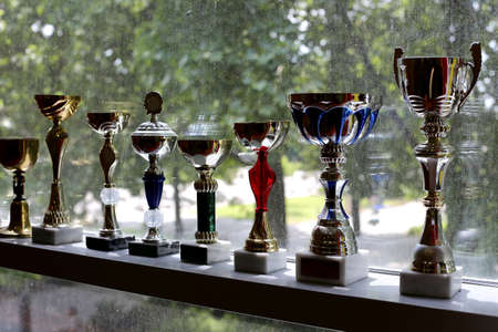 Group of sport trophies in a row in a sports hall against windows as green natural background