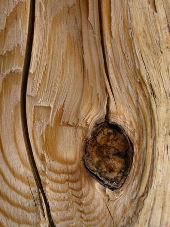 wood texture: Rough Oak Wood Grain Stock Photo