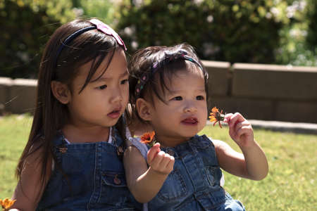 asian toddler: Asian toddler sisters playing with flowers