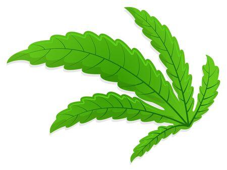 Bended Marijuana Leaf
