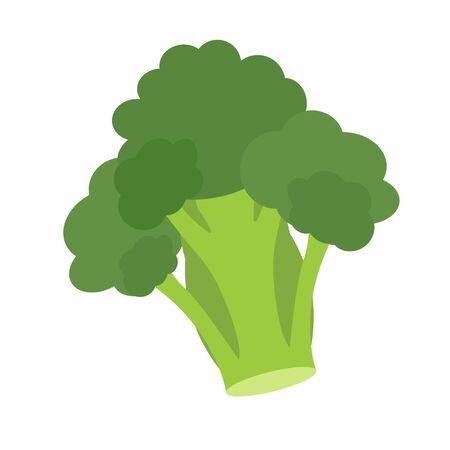 Broccoli vector.