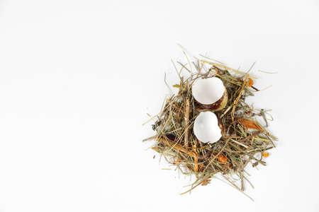 quail egg: Broken quail egg on a white background