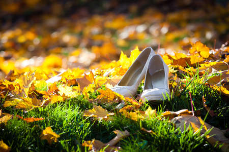 Brides shoes on golden leaves photo