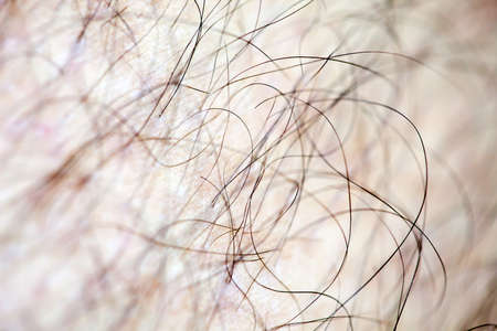 Male human hair close up