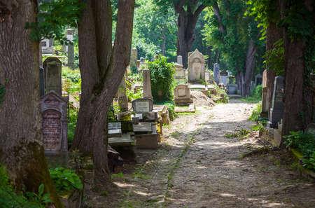 Sighisoara old cemetery