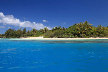 south pacific: Beach with Coconut Trees in Perfect Blue Lagoon of Maupiti, French Polynesia.