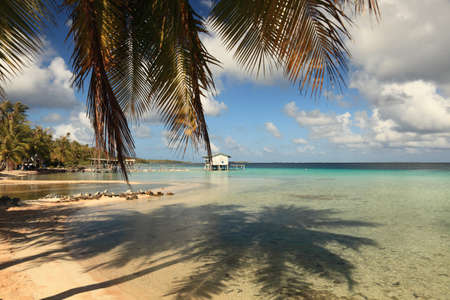 Dream Beach on Manihi Atoll in the South Pacific with Shadow of Coconut Tree in Turquoise Water.    Archivio Fotografico