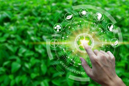 Tocco del dito con le icone dell'ambiente sulla connessione di rete sullo sfondo della natura, concetto di ecologia della tecnologia.