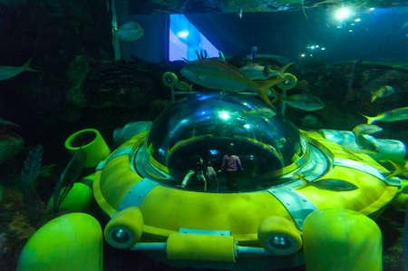 Exotic marine animals swimming in an aquarium in Toronto, Canada