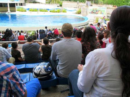spectators: p�blico
