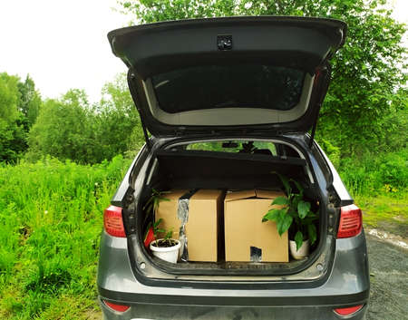 Cortea boxes and flowers in the open trunk of the car. The car is outdoors. There is green grass and trees in the background. The boxes are glued. Moving. A change of residence. Packaging. Copy space.