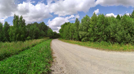 The road to the dol of green fields and trees. Blue sky. The road is unpaved. Landscape. Beautiful picture of the countryside. Banner. Panorama. Reklamní fotografie