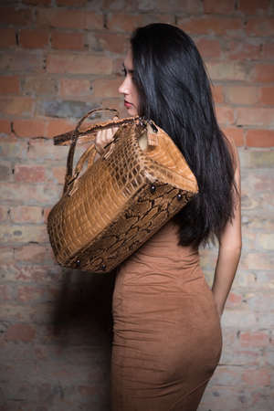 Nice young brunette posing with reptile handbag Stock Photo