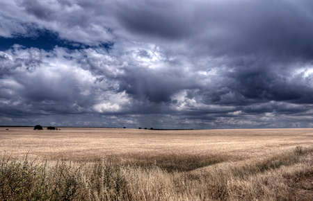 workable: Arable land dry field with storm clouds forming