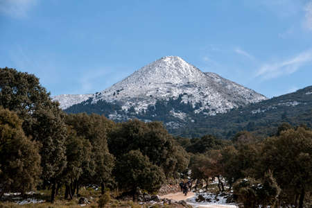 Beautiful natural park of the Sierra de las Nieves in the province of Malaga, Andalusia