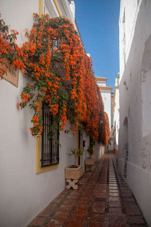 Streets of the old town of Marbella, Malaga