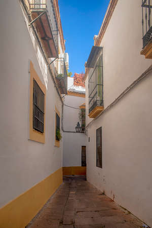 Stroll through the historic center of the city of Cordoba, Andalucia