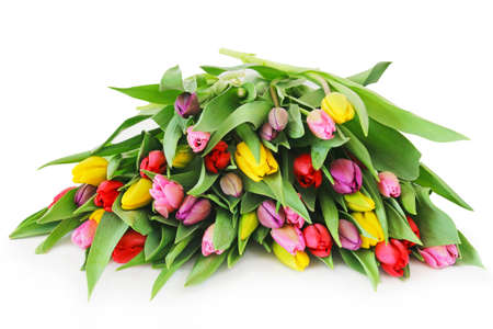 Colorful fresh spring tulips flowers on white background Banco de Imagens