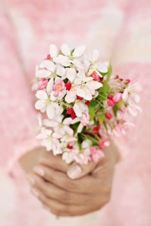 Close-up of womans hands holding fresh spring flowers. Very shallow DOF. Selective focus on the flowers. Stock Photo
