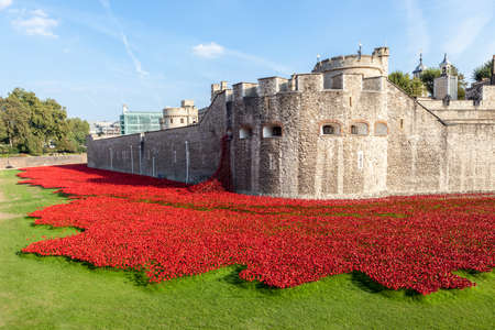 Ceramic red poppies create a field of blood at The Tower of London
