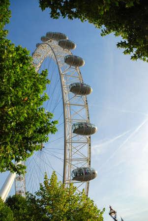 런던 아이 (London Eye)는 나무를 통해 본